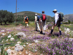 ...explore the Cretan countryside on foot...
