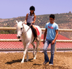 Go horseriding from Pendamodi's stables...